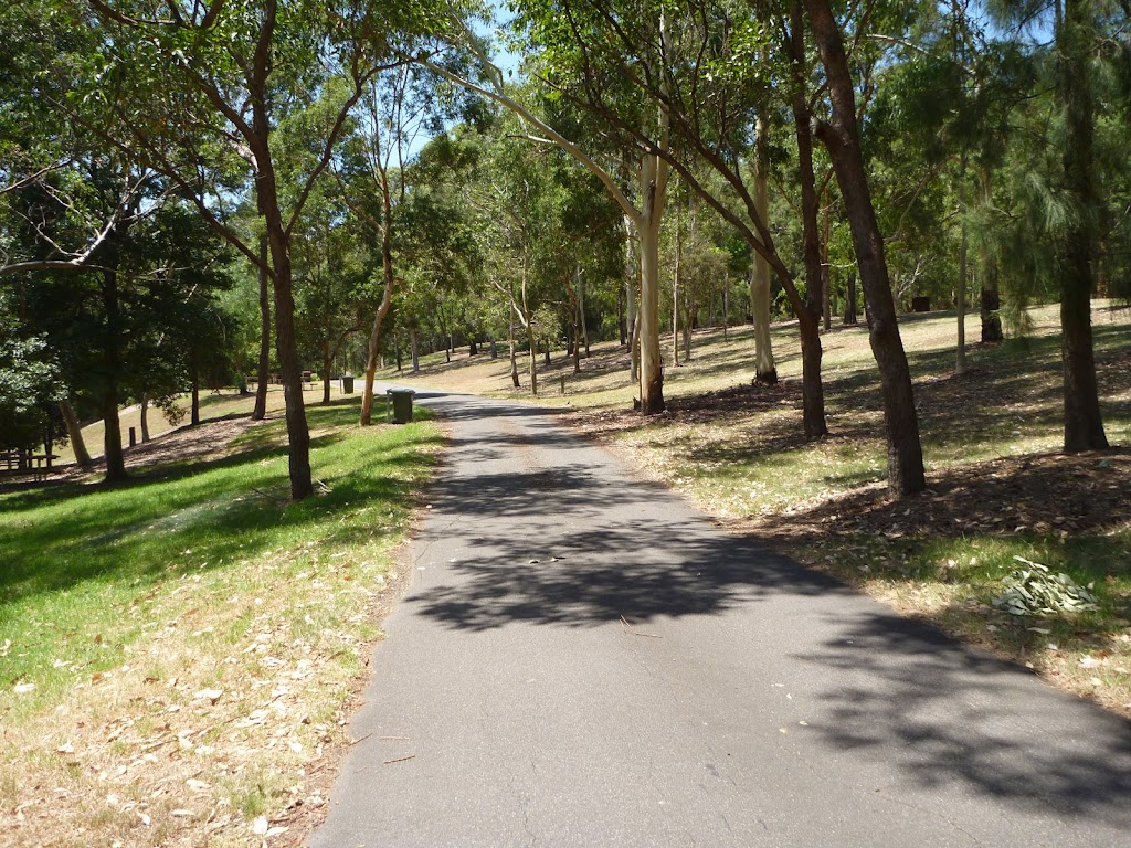 Trail through open trees at Richley Reserve