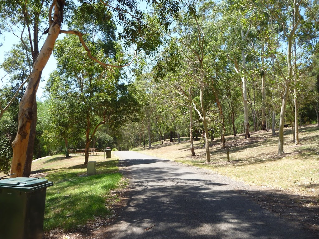 Trail amongst trees and grassland at Richley Reserve in Blackbutt Reserve