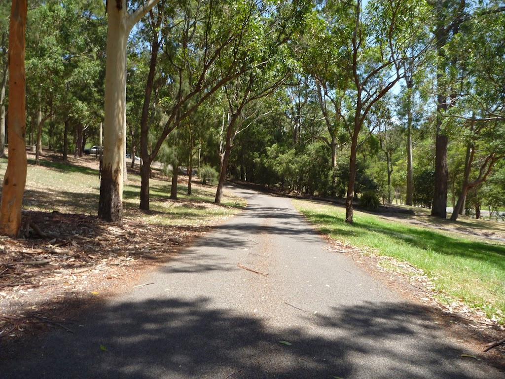 Sealed trail in Richley Reserve in Blackbutt Reserve