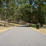 Gently downhill trail and garage bin in Richley Reserve