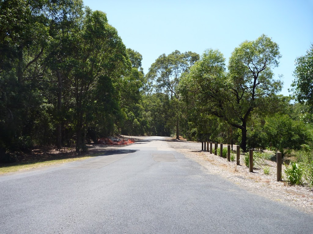 Sealed road in the Richley Reserve Car Park in Blackbutt Reserve