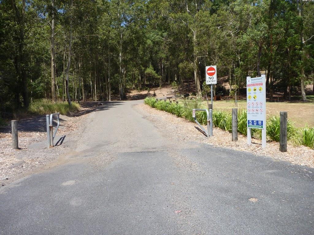 Trail near the Richley Reserve Car Park in Blackbutt Reserve