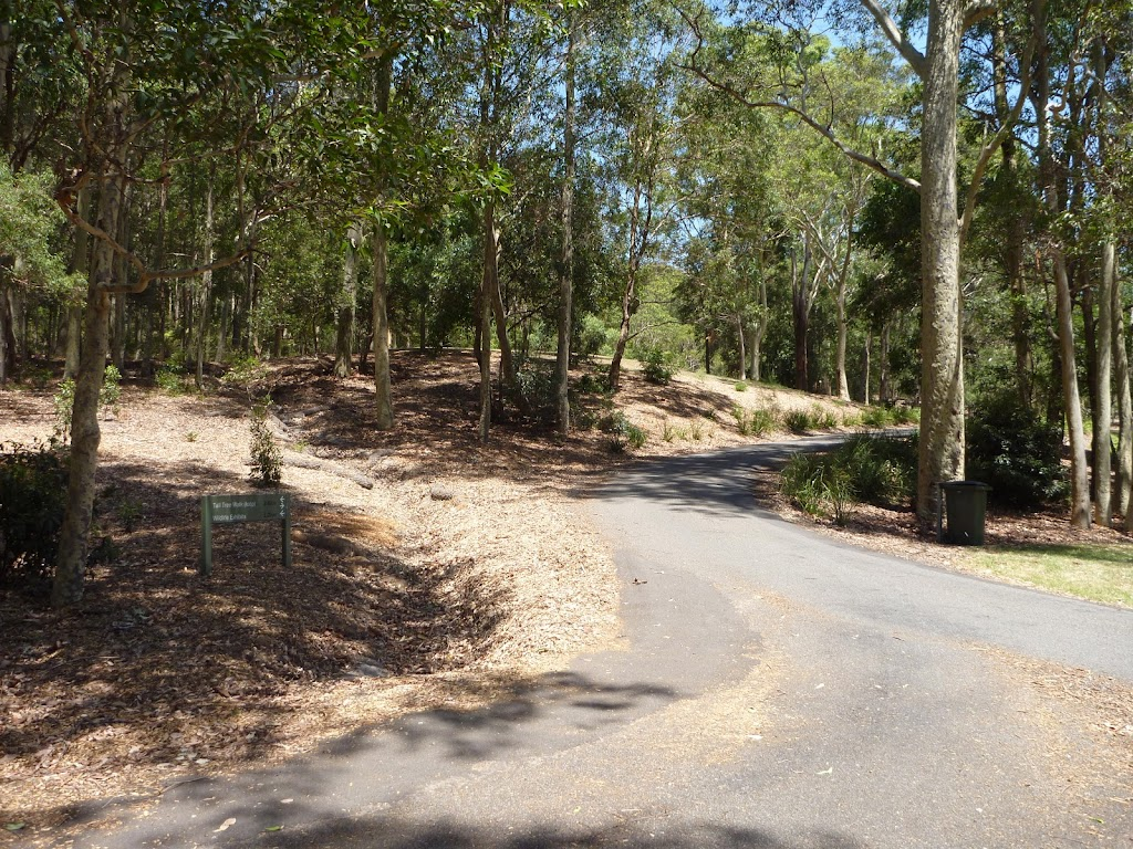 Trail near Richley Reserve in Blackbutt Reserve (401755)