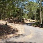Trail near Richley Reserve in Blackbutt Reserve (401755)