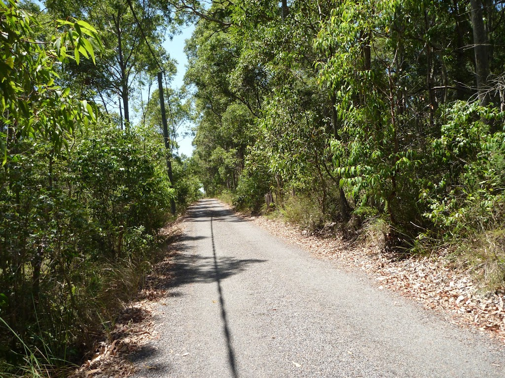 Trail with overhead powerlines in Blackbutt Reserve
