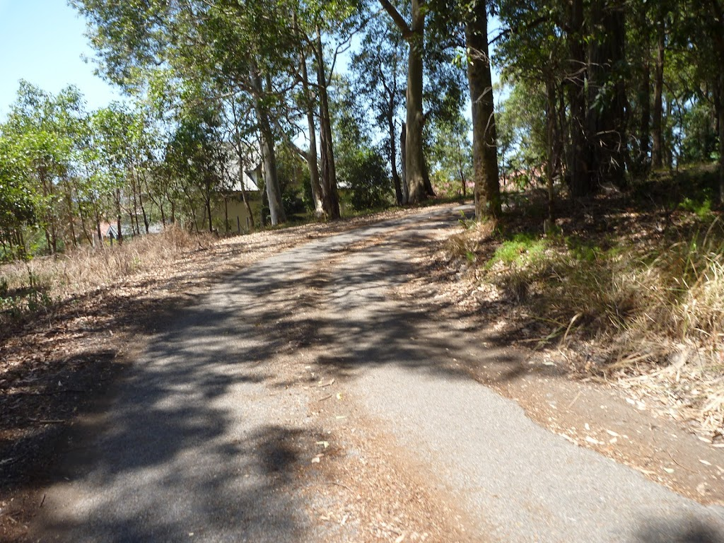 Trail near Dunkley Ave in Blackbutt Reserve (401809)