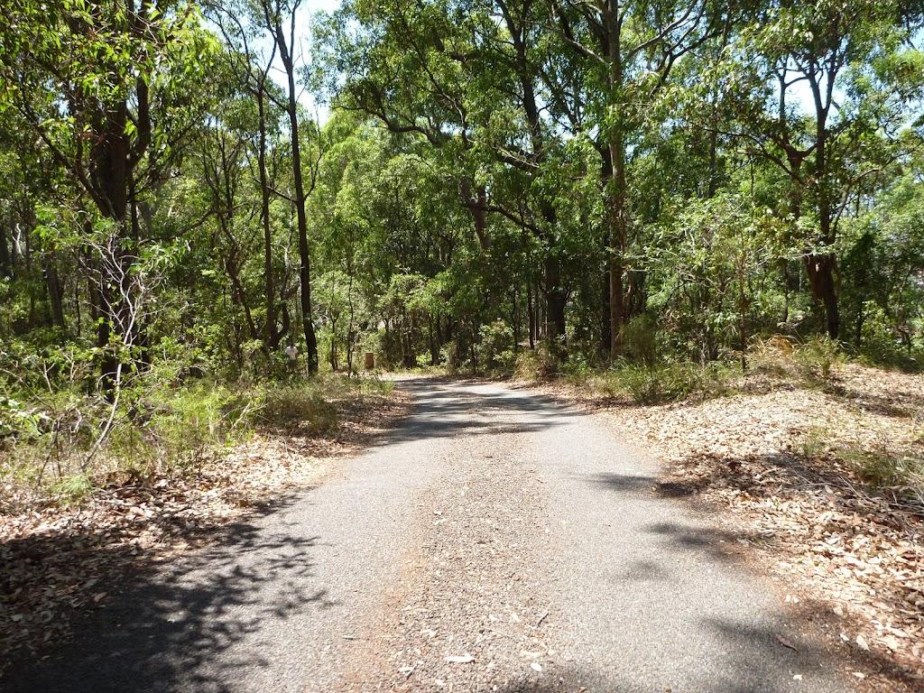 Sealed trail in Blackbutt Reserve