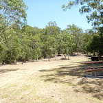 Large grassy picnic area in Richley Reserve