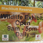 Blackbutt Reserve 'Wildlife Exhibits' sign in Carnley Ave Reserve (401965)