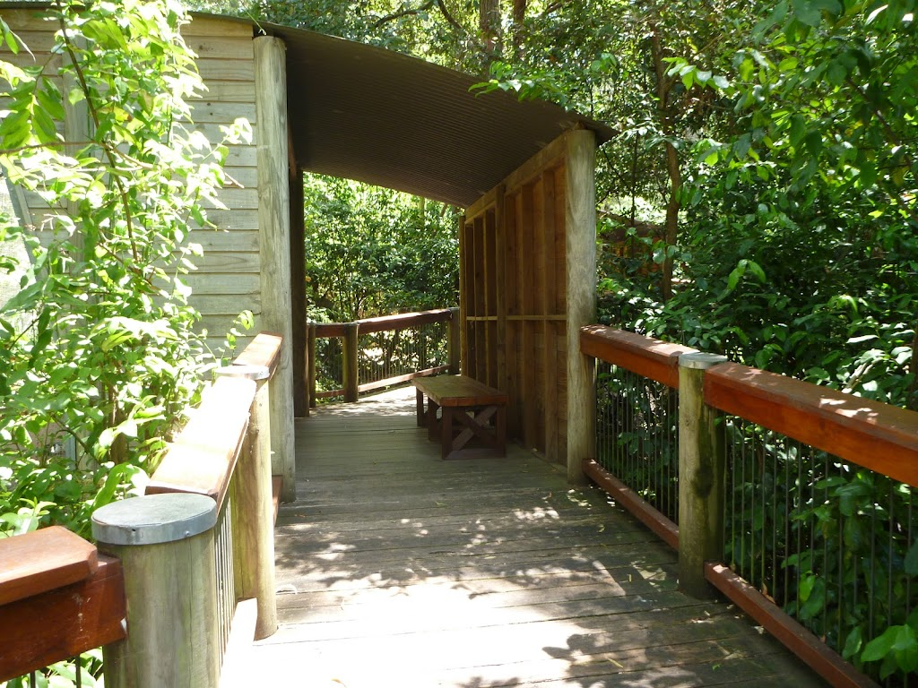 Boardwalk in the Wildlife Exhibits in Carnley Avenue Reserve