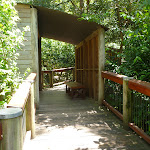 Boardwalk in the Wildlife Exhibits in Carnley Avenue Reserve (402034)