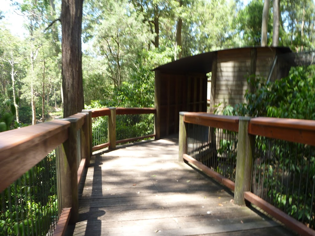 Elevated boardwalk on the Wildlife Exhibits at Carnley Ave Reserve