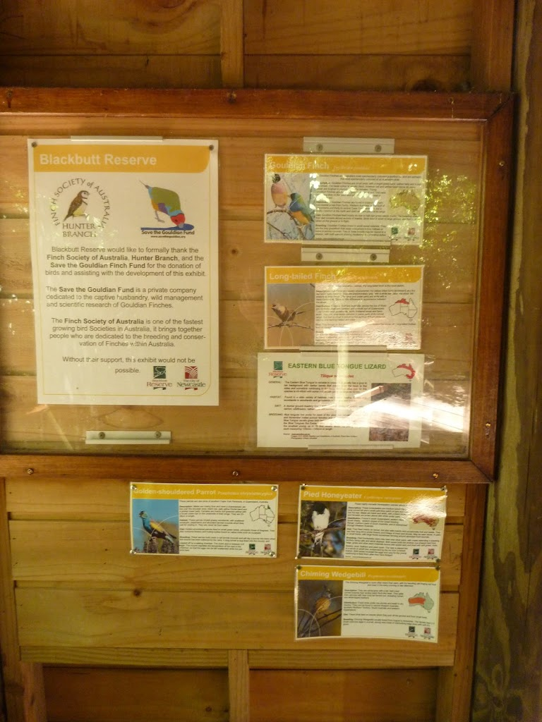 Information board at the Wildlife Exhibits in Carnley Avenue Reserve