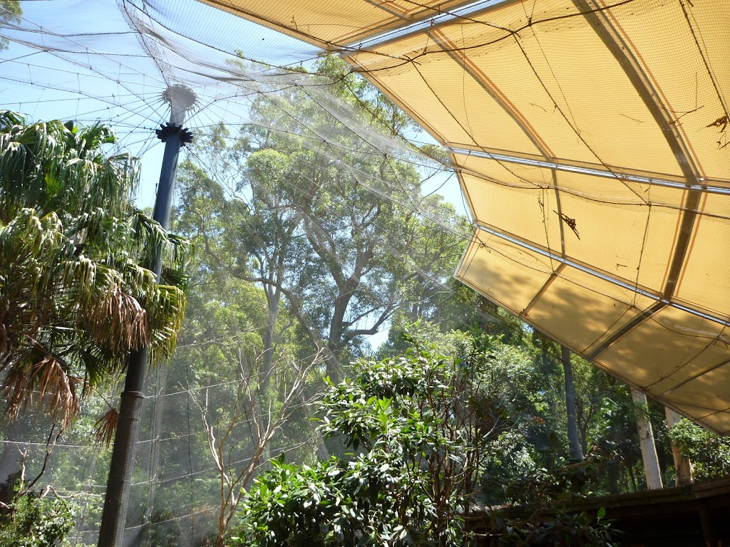 Large aviary at the Wildlife Exhibits at Carnley Ave Reserve in Blackbutt Reserve