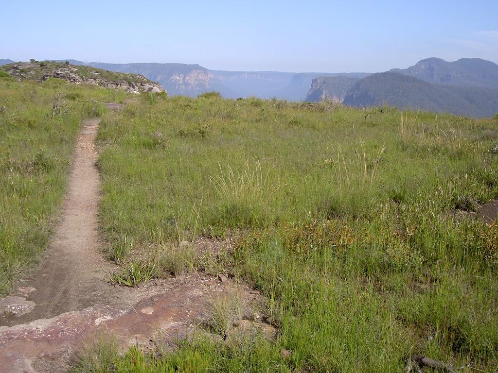 Hay Wall Track (40236)