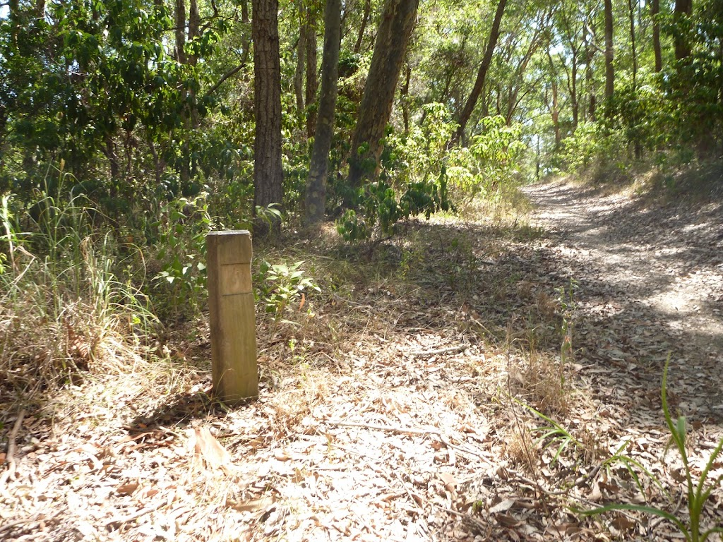 Signposts guide bushwalkers through Green Point Reserve