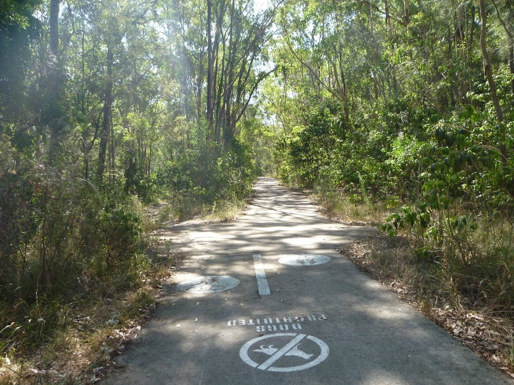 Shared footpath in Green Point Reserve on Lake Macquarie