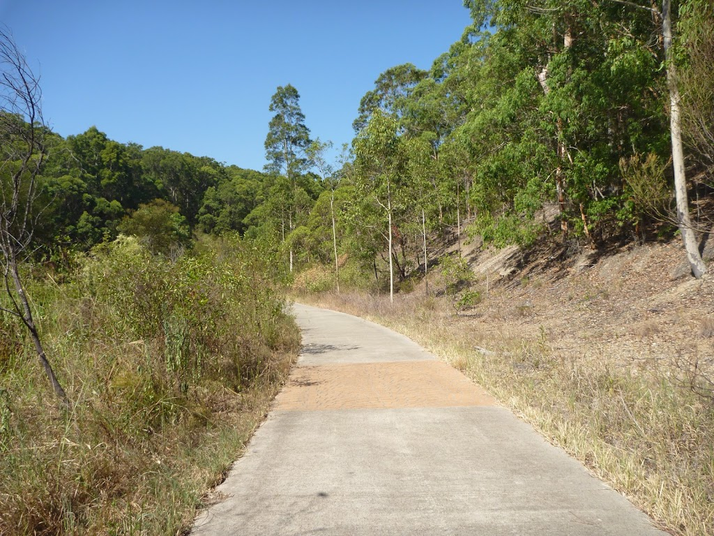 A small clearing on the Zig Zag Track in Green Point Reserve