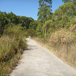 Zig Zag track in Green Point Reserve (403213)