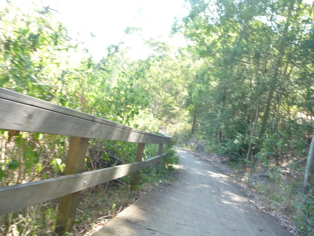 Timber fencing next to trail in Green Point Reserve