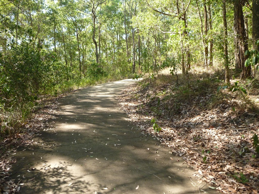Sealed Trail in Green Point Reserve near Lake Macquarie (403294)