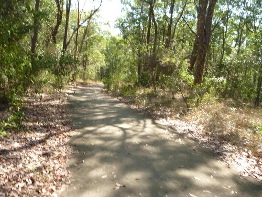 Sealed Trail in Green Point Reserve