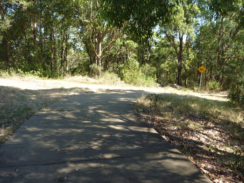 Downhill Trail in Green Point Reserve, close to Lake Macquarie