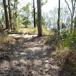 Foreshore Track Lake Macquarie (403783)