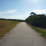 Foot path near Green Point Drive on Lake Macquarie (404047)