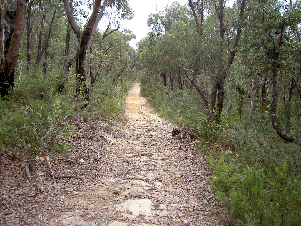 Fortress Ridge service trail