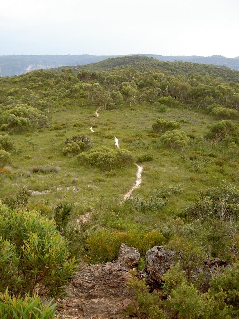 Fortress Ridge track