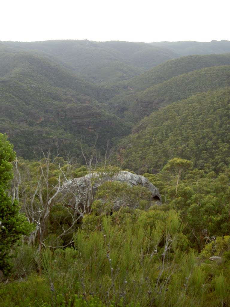 View into the Grose Valley from Fortress Ridge lookout