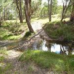 Six Foot Track crossing Mitchells Creek (412247)