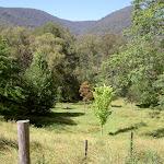 Farmland south of Alum Creek (41268)