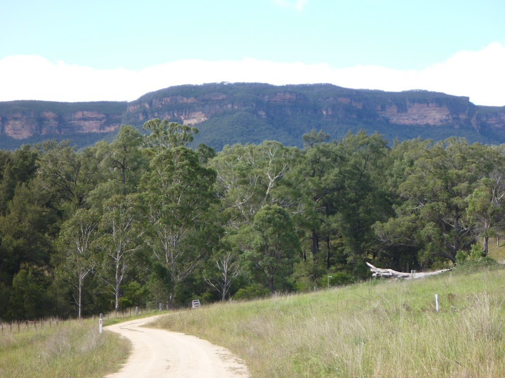Views of the escarpment from the Euroka property on the Six Foot Track (412700)