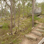 Well maintained track with timber steps among the granite boulders