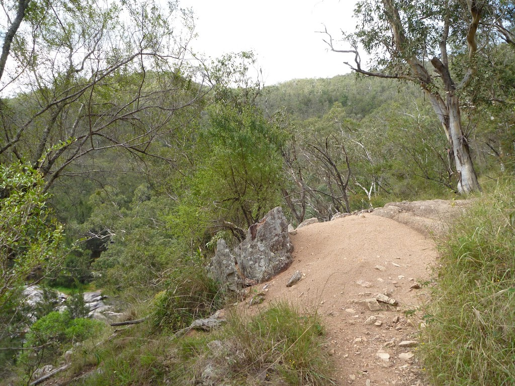 Six Foot track on the east side of the Coxs River