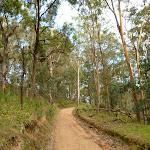 6FT west of Kiangatha Gate (415745)
