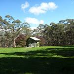 Large Grassy Black Range Camping Ground (417020)