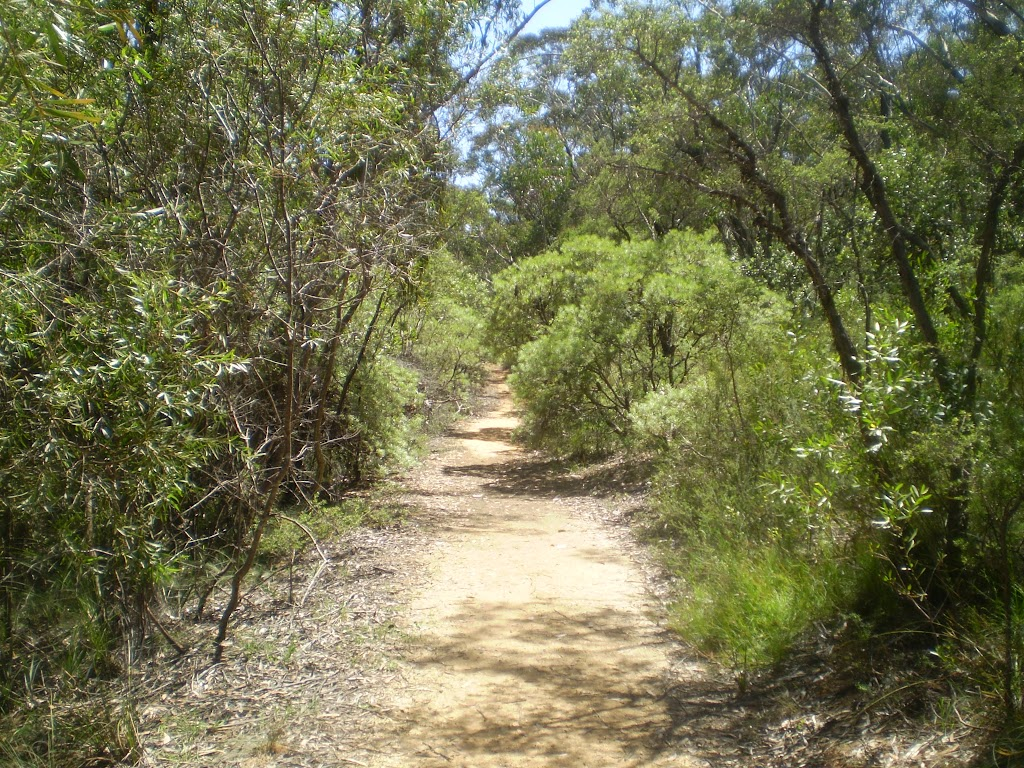 The Nature Track