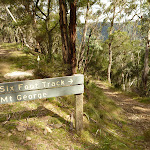 Six Foot Track north of Mount George