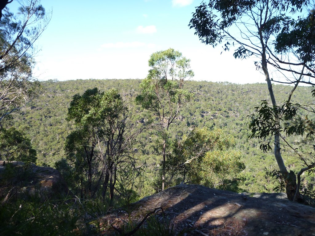 View from near the top of Berowra Track