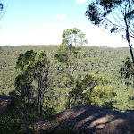 View from near the top of Berowra Track (419035)