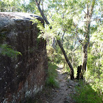 Short cliff on the Berowra Track (419230)