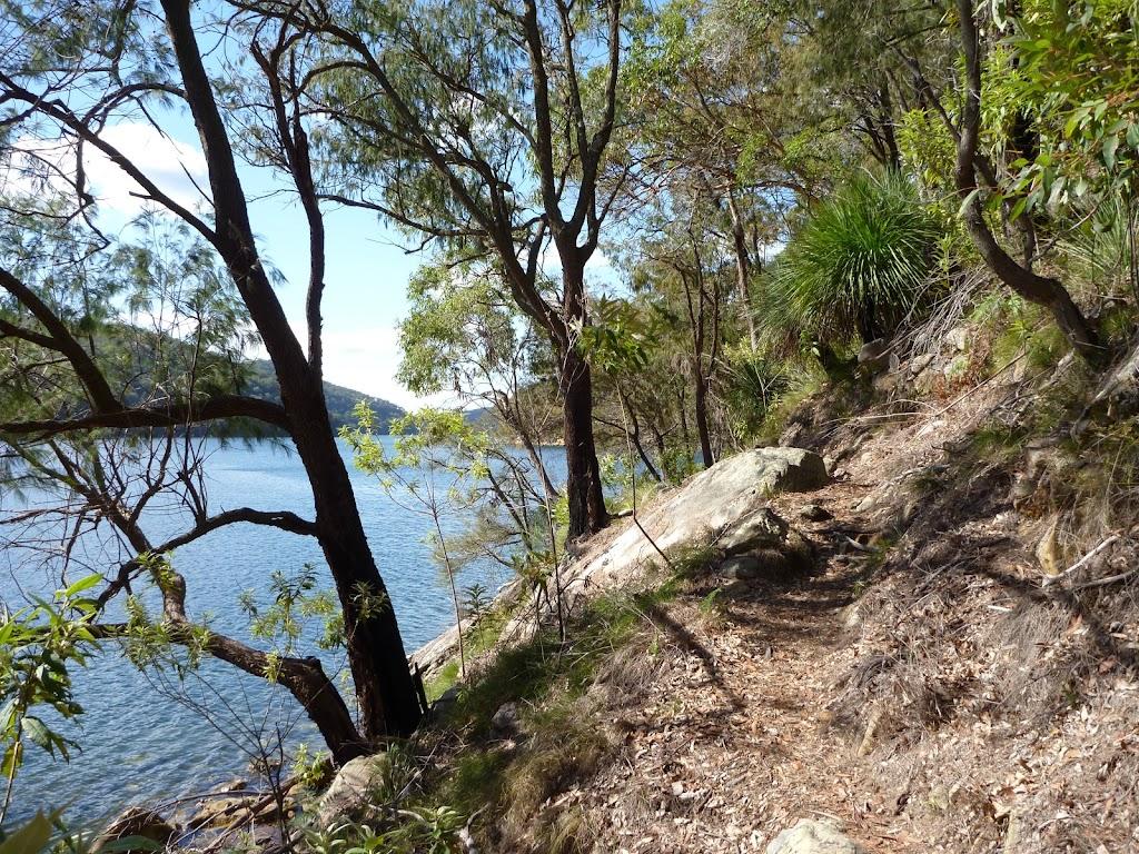 Track beside Waratah Bay (419725)