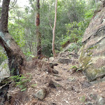 Rocky steps on Berowra Track (419995)