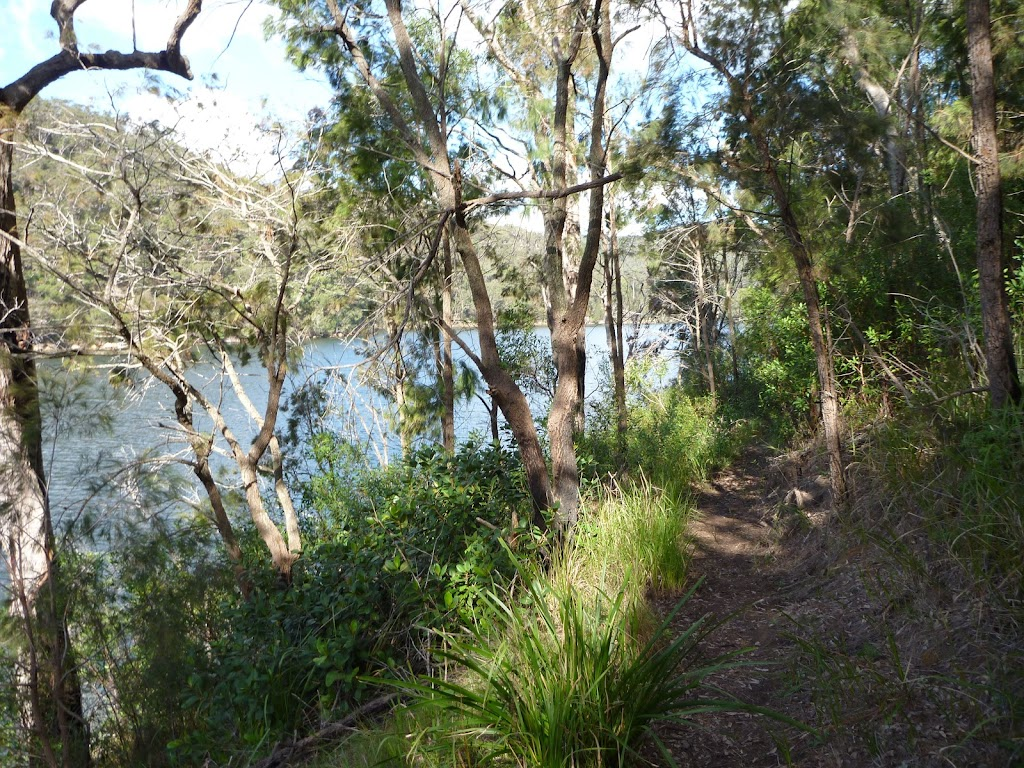 Berowra Track south of Winson Bay