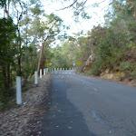 Walking along Apple Tree Bay Road (421144)
