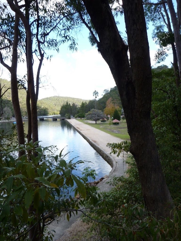 Glimpse of Bobbin Head from Apple Tree Bay Road