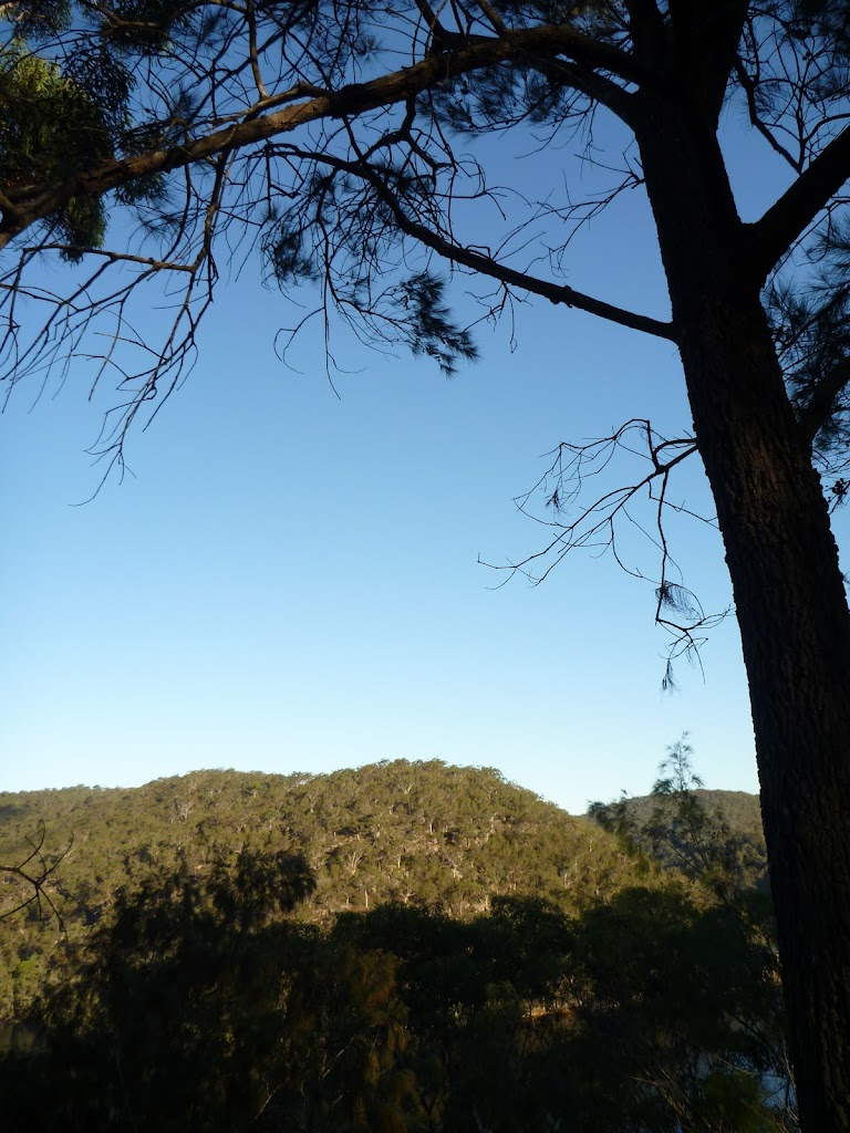 View from Near the bottom of Mt Kuring-gai Track